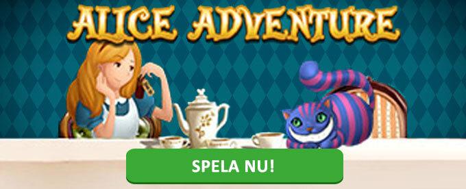 Alice Adventure banner