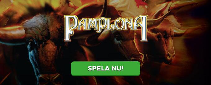 Pamplona banner