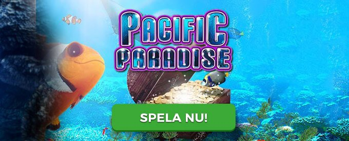 Pacific Paradise banner