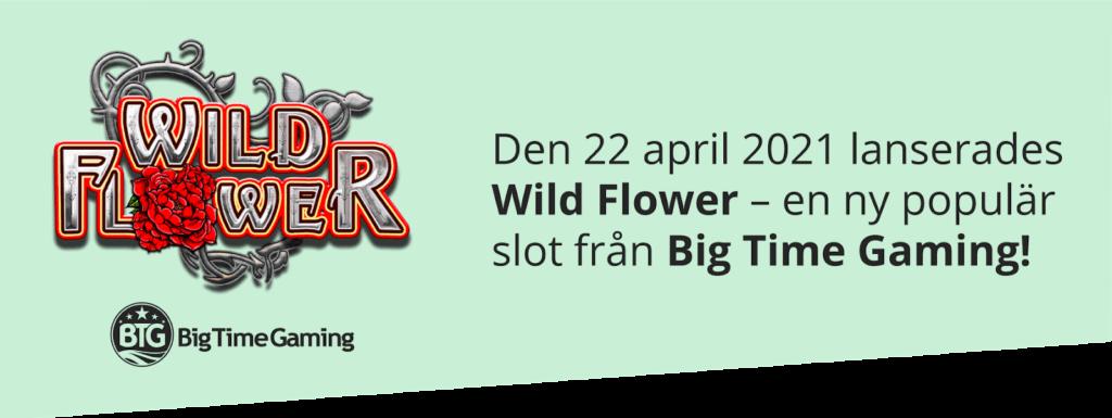 Wild Flower ny slot från Big Time Gaming