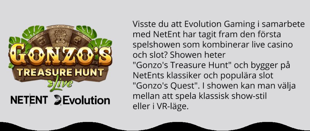 Gonzo's Treasure Hunt Game Shows