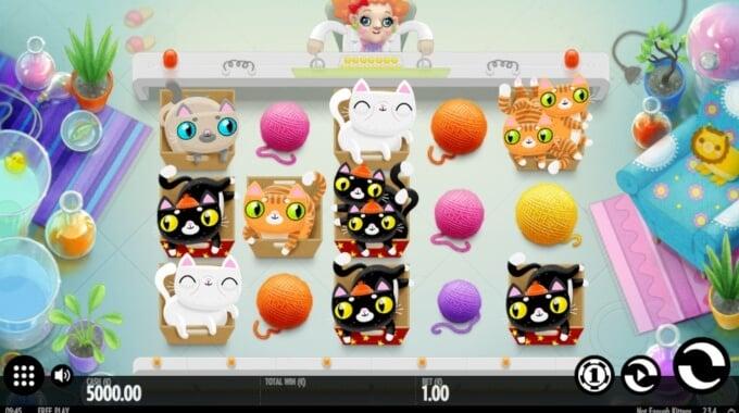 Not Enough Kittens Slot Bonus 1