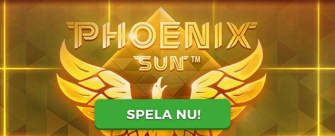 Phoenix Sun banner