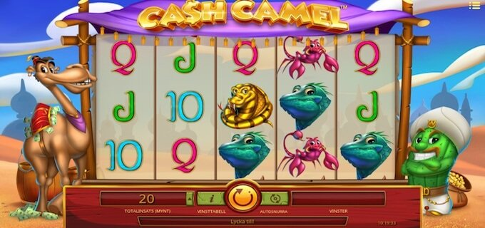 Cash Camel spelplan