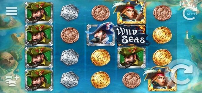 Wild Seas spelplan
