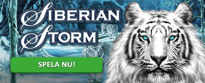 Siberian Storm banner