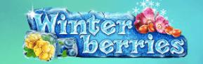 Winterberries logga.
