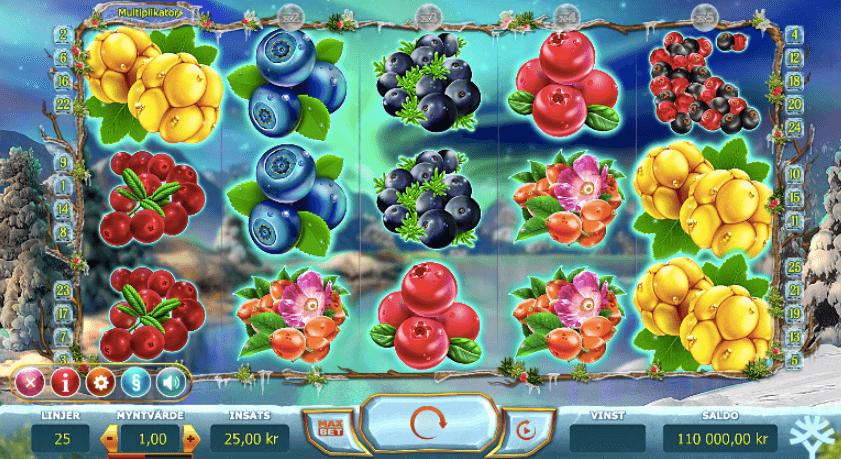 Winterberries spelplan.